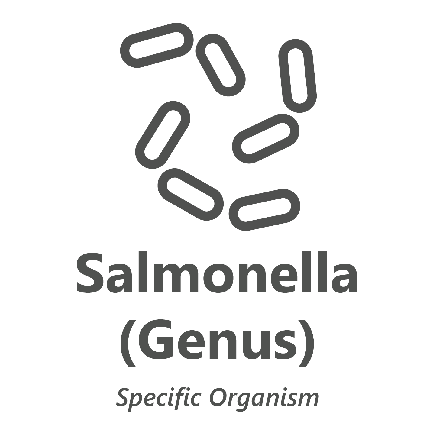 Web store icon for Salmonella microbiology test.